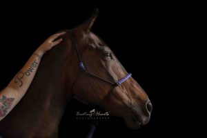 Equine Photography Oregon City Beating Hearts Photography