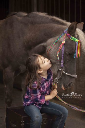 equine photography, horse photography, oregon, horse portraits, black backround horse pictures