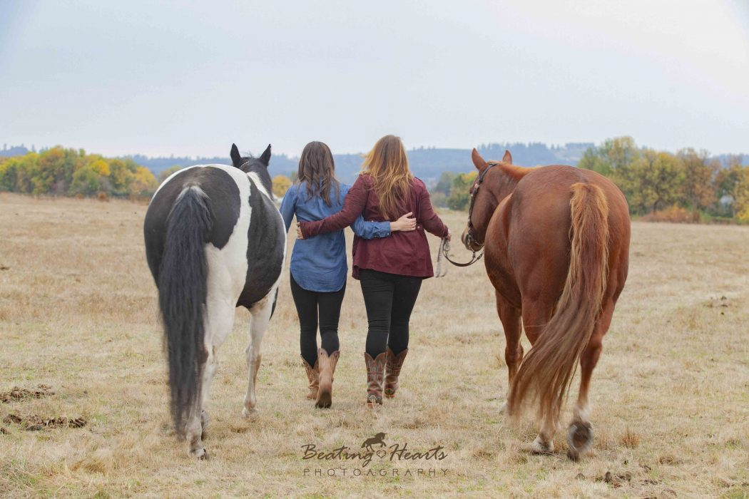 best friends, equine photography, horse photography, oregon, horse portraits, black backround horse pictures